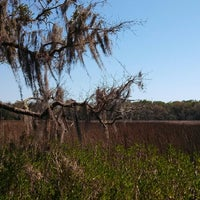 Photo taken at The Theodore Roosevelt Area at Timucuan Preserve by Edmaria R. on 3/28/2013