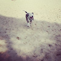 Photo taken at Ogden Park Dog Park by Gabrielle L. on 3/1/2014