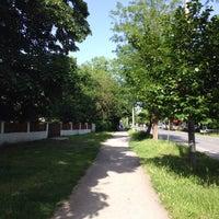 5/15/2016 tarihinde Sinem O.ziyaretçi tarafından Kırkpınar Yürüyüş Yolu'de çekilen fotoğraf