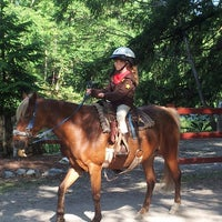 langs horse and pony farm