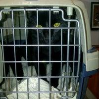 Foto tomada en Lamoille Valley Veterinary Services por Brandy E. el 9/15/2012