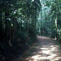 Photo taken at Trilha da Nascente do Córrego Pirarungáua by Evandro R. on 1/19/2013