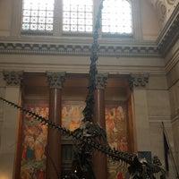 Foto scattata a American Museum of Natural History Store da Rachel D. il 3/16/2018
