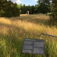 Photo taken at Berggarten by Steffen H. on 6/28/2015