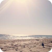 Foto tirada no(a) Spanish River Beach por Vivian A. em 1/26/2013