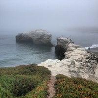 Photo taken at Natural Bridges State Beach by Elisa S. on 8/19/2013