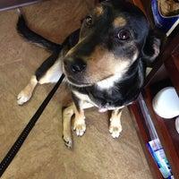 Photo taken at Pet Samaritan Clinic by Matthew M. on 6/27/2014