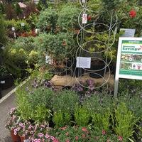 Photo taken at Flowercraft Garden Center by Olga A. on 4/28/2018