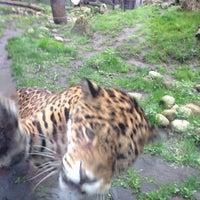 Foto tirada no(a) Miejski Ogród Zoologiczny por Kateryna ✌. em 5/3/2013