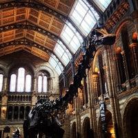 Foto tomada en Museo de Historia Natural por Kelly J. el 5/24/2013