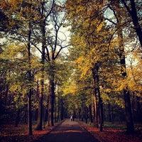 10/20/2012 tarihinde Senuwki A.ziyaretçi tarafından Парк «Останкино»'de çekilen fotoğraf