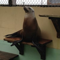 Photo taken at Morro Bay Aquarium by Victoria S. on 4/25/2014