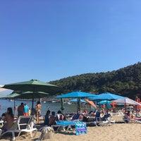 Photo taken at Sunj Lopud Beach by Bart S. on 7/8/2017