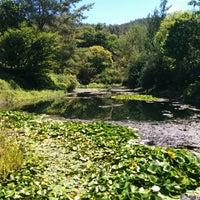 photo taken at quarryhill botanical garden by jef p on 7312014 - Quarryhill Botanical Garden