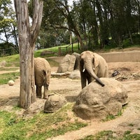Photo taken at African Elephants by Jeff W. on 4/28/2018