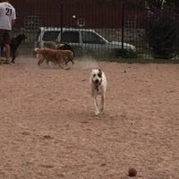 Photo taken at Shaw Neighborhood Dog Park by Nikki V. on 9/29/2015