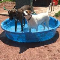Photo taken at Shaw Neighborhood Dog Park by Nikki V. on 4/23/2016