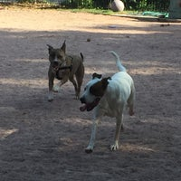Photo taken at Shaw Neighborhood Dog Park by Nikki V. on 9/22/2015