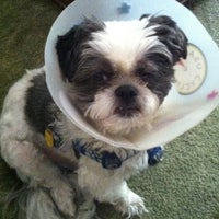 ... Photo Taken At Garden State Veterinary Specialists By Michele B. On  9/26/ ...