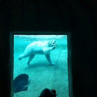 Photo taken at Toronto Zoo by Ken on 3/28/2013