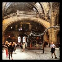 Foto tomada en Museo de Historia Natural por Nuno O. el 6/5/2013