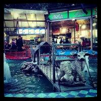 5/1/2013 tarihinde Şeyma S.ziyaretçi tarafından Seyhan Çay Bahçesi'de çekilen fotoğraf