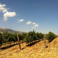 Photo taken at Chateau Marsyas by Rita C. on 10/13/2012