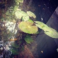 Photo taken at Stirred by Suzanna Gayatri on 7/1/2013