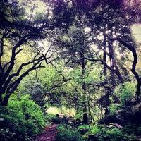 Foto tomada en Golden Gate Park por Josiah R. el 4/5/2013