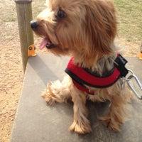 Photo taken at Bill Archer Dog Park by Jessyca on 3/9/2013