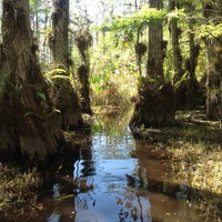 Photo taken at Big Cypress National Preserve by nikhil t. on 3/6/2012