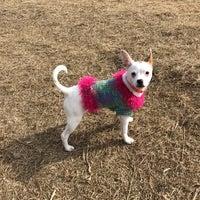 Photo taken at Rice Creek Dog Park by Miranda S. on 2/27/2017