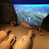 Foto scattata a Museo Archeologico da Veronica L. il 6/6/2013