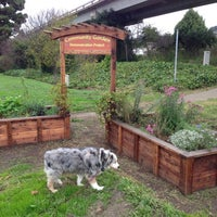 Photo taken at community garden by Billy G. on 11/29/2012