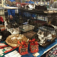 Photo taken at PetSmart by Carrie S. on 12/12/2015