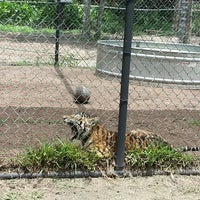 Photo taken at Catty Shack Ranch Wildlife Sanctuary by Catie M. on 6/9/2013