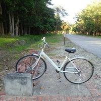 Photo taken at อ. OR shop -Rental bike by : P on 11/24/2015