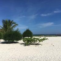 Photo taken at Malibu Beach Bungalows Koh Phangan by Tomelie on 2/8/2017