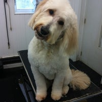 Photo taken at Goldwood Kennels by Leah H. on 1/14/2013