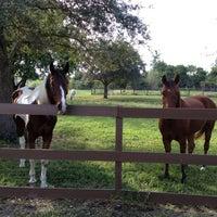 Photo taken at Lori's Barn by Melinda Z. on 11/29/2012
