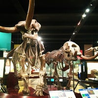 Photo taken at Exhibit Museum of Natural History by Brett S. on 12/12/2012