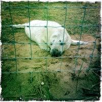 Photo taken at Donna Nook Beach by Michelle M. on 11/16/2012
