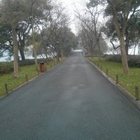 Photo taken at 苏堤 Su Causeway by Johnny W. on 12/20/2012