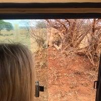 Photo taken at Manyara Wildlife Safari Camp by Chris T. on 11/4/2017