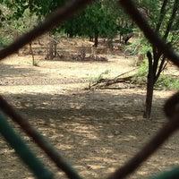 Photo taken at Deerpark by Kalchuk E. on 4/14/2013