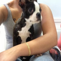 Photo taken at Kingsbridge Animal Hospital by An.sti.ce D. on 7/31/2013
