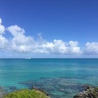 Photo taken at Bermuda Railway Trail by Shari-Lynn P. on 8/26/2016