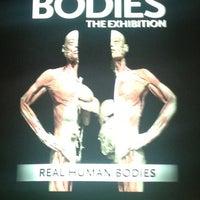 9/17/2012 tarihinde Anne O.ziyaretçi tarafından BODIES...The Exhibition'de çekilen fotoğraf