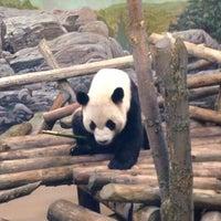 Photo taken at Toronto Zoo by Claudia W. on 5/21/2013