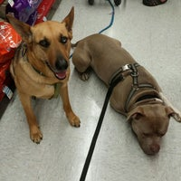 Photo taken at Petco by Jacqueline C. on 5/2/2015